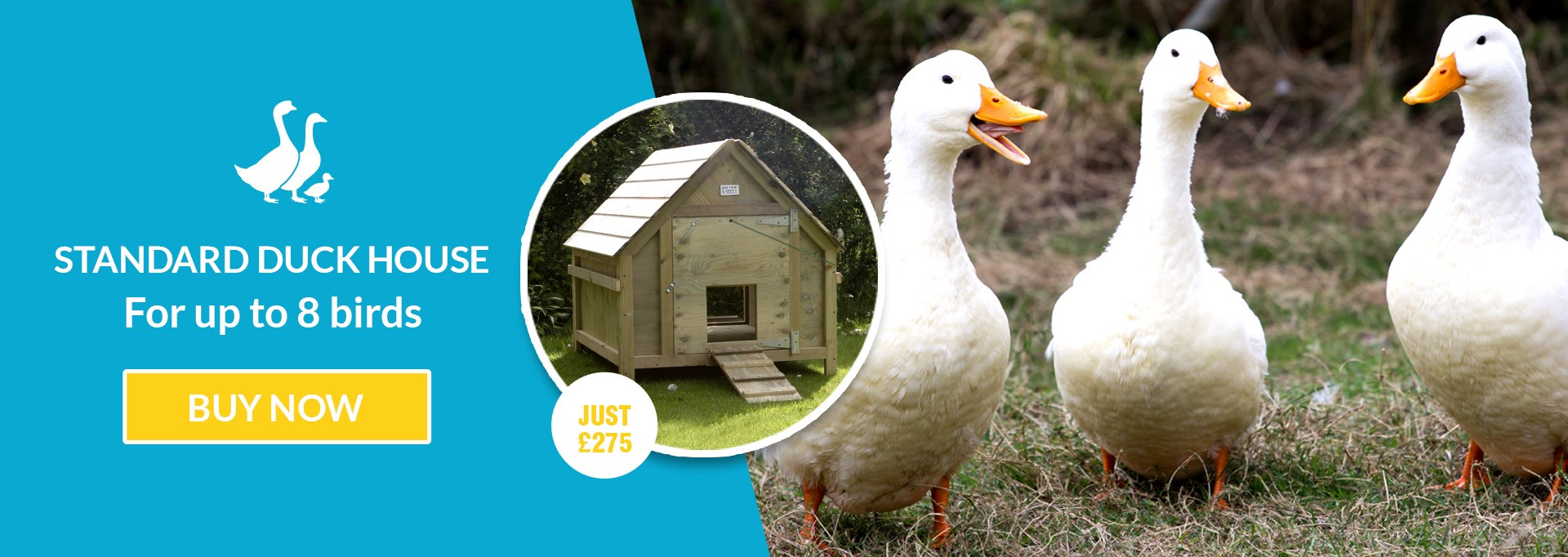 Jim vyse arks bird enclosure for chicken ducks jim vyse arks banner example banner example 2 solutioingenieria Choice Image
