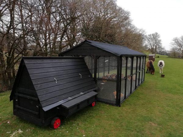 50 bird house with walk in run