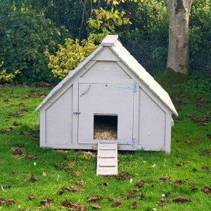 deluxe duck house