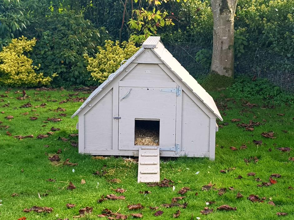 Jim vyse arks blog archive deluxe duck house jim vyse arks for Duck house door size