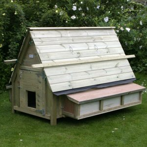 30 bird chicken house