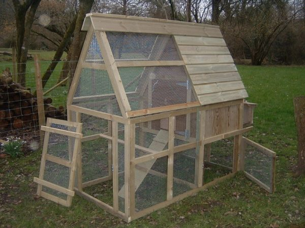 chicken house with enclosed run
