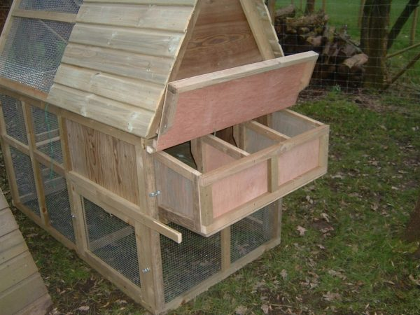 chicken house enclosed run rear view