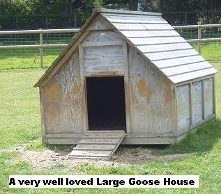 large goose house