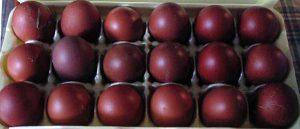 black copper maran chicken eggs