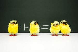 chicken maths